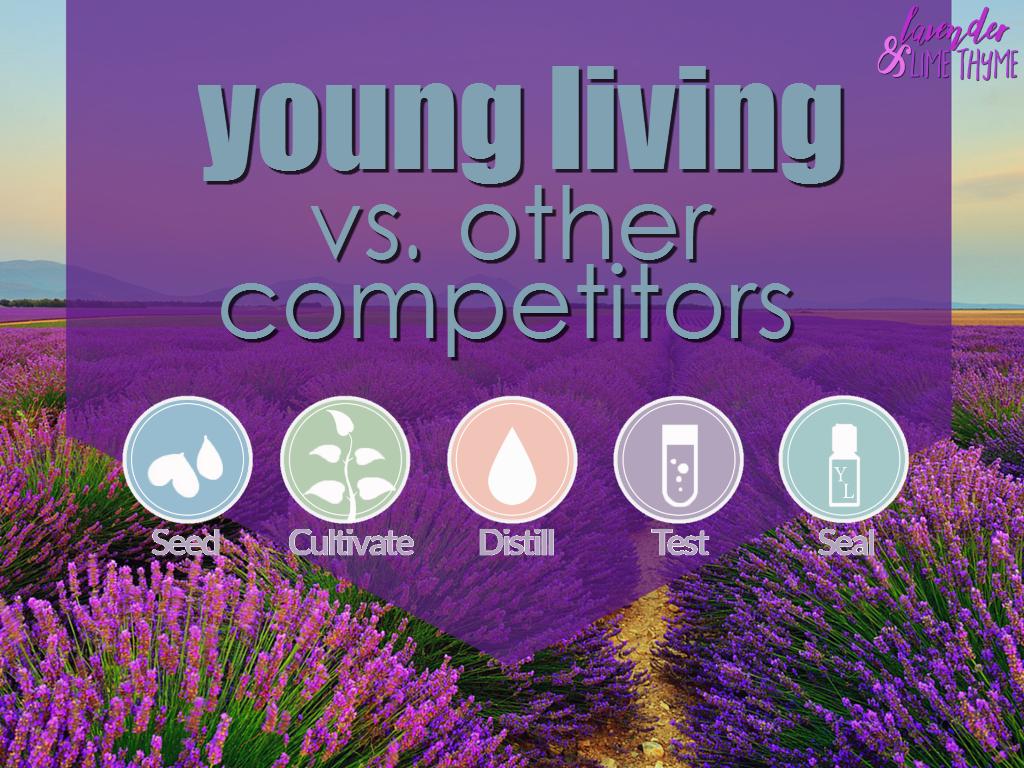 YL vs Competitors